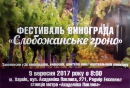 """Фестиваль винограда """"Слобожанське гроно"""""""